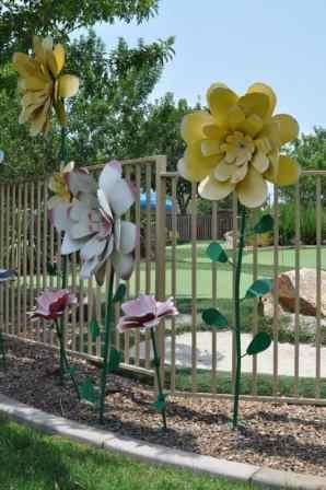 flowers at Rancho Sahuarita