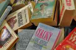 novels at the Book Barn