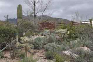 private property around Pima Canyon