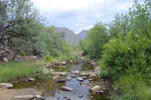 Sabino Canyon Tucson by Michael Eskue