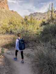 kids on Ventana Canyon Trail