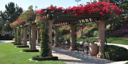 flowers-Bill-Barber-Memorial-Park-Irvine