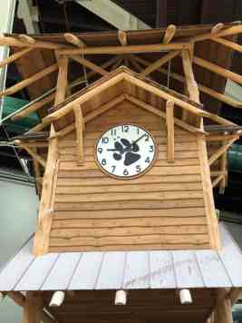 Clock Waterpark Great Wolf Lodge
