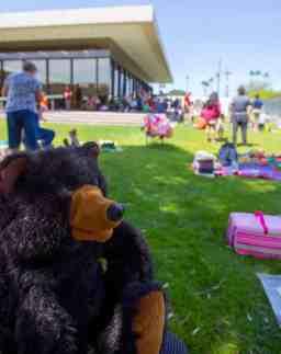 teddy bear picnic murphy wilmot library