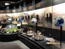 education arizona sonora desert museum