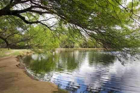 pond Fort Lowell Park