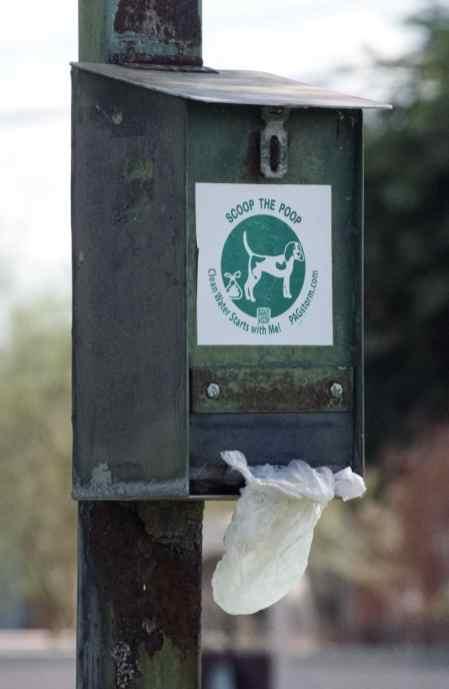 scoop the poop dog Himmel Park Tucson