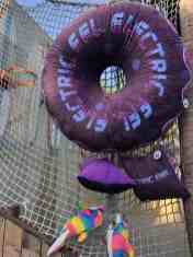 SeaWorld San Diego Electric Eel