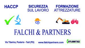 Falchi & Partners - Sito web