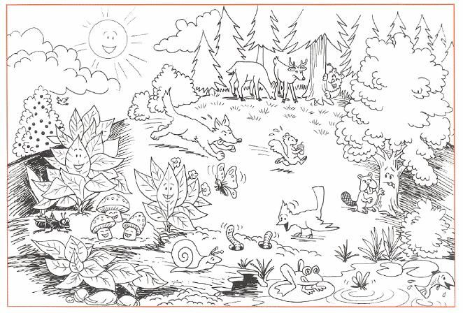Animals Coloring Sheets To Print
