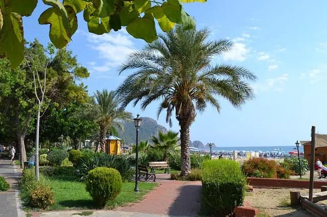 Palmen an der Strandpromenade am Atatürk Park