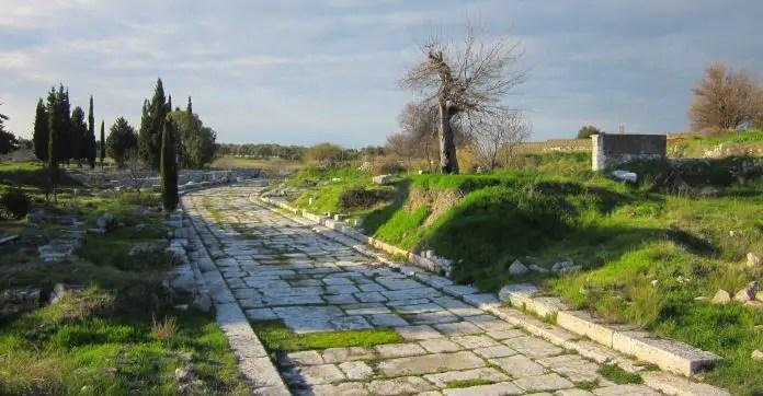 Graue Steinplatten sind als Pflastersteine auf einen Weg gelegt worden. Er ist von einer grünen Wiese und Sträucheern umgeben.