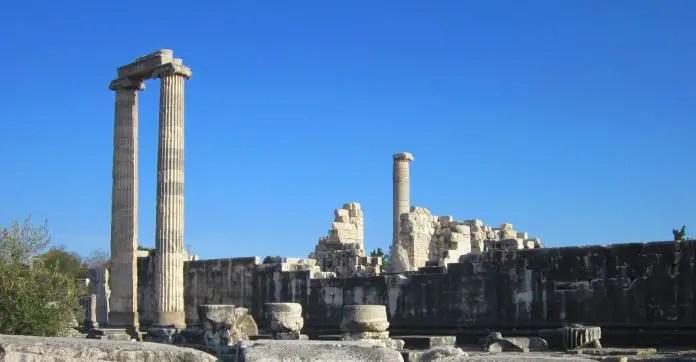 Säulen und Mauern in grauer Farbe sind neben kleinen Sträuchern und Bäumen in Didyma zu sehen.