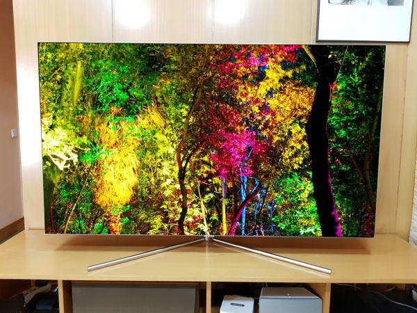 Samsung-QLED-Q7F-65 bosque de colores