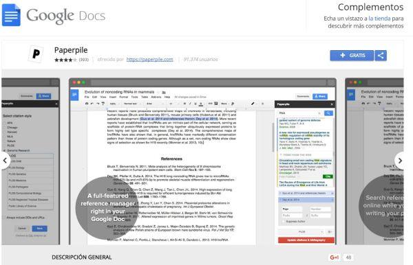 GoogleDocs ext PaperPile