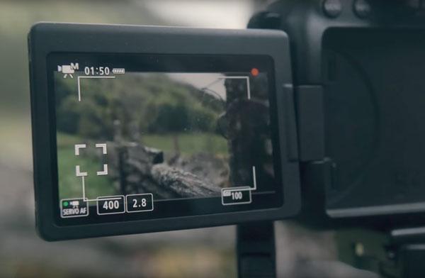 hemos probado Canon℗ EOS 6D Mark II Dual Pixel
