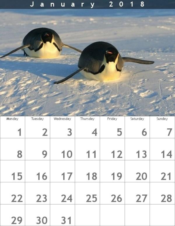 Calendario 2018 enero