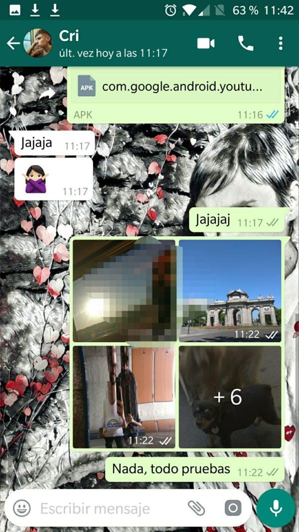 album fotos whatsapp