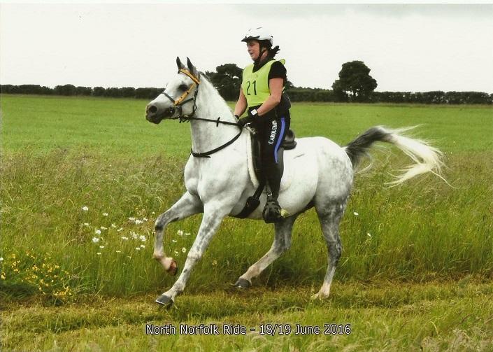 carol-chapman-endurance-rider
