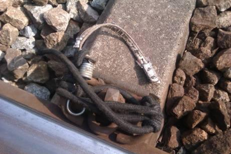 Cadela amarrada duas vezes a um carril na linha de comboio do Douro