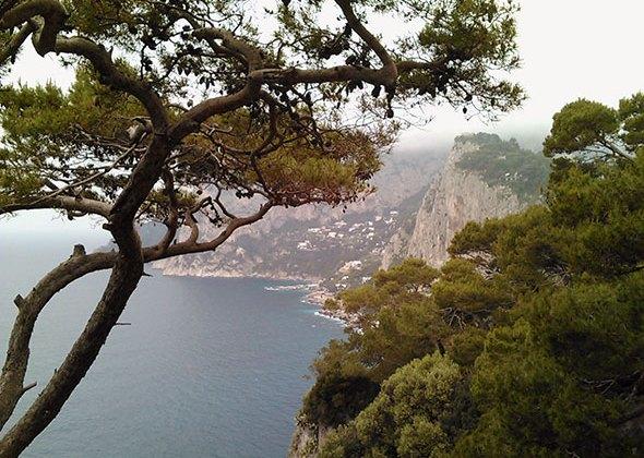 Vista de Capri. Foto (c) Francisco Jódar