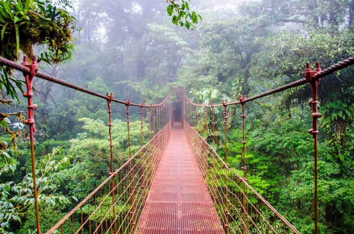 Tu Gran Viaje a Costa Rica. Los puentes colgantes de Monteverde. © Shutterstock