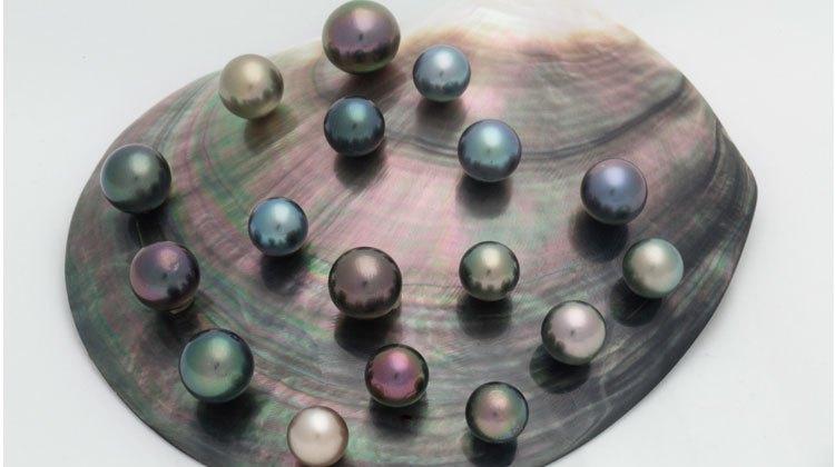 Las perlas negras de las islas cook en Tu Gran Viaje revista de viajes y turismo