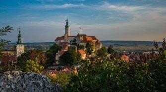 La vendimia en la República Checa   Revista Tu Gran Viaje