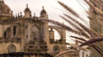 Saeta Flamenca al Paso de la Semana Santa de Jérez | Tu Gran Viaje