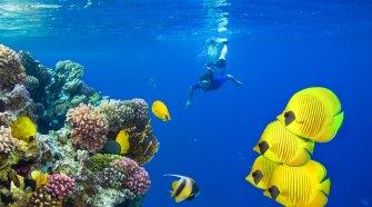 Deportes acuáticos en Egipto