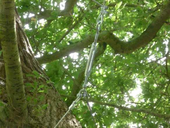 The hawser strop goes around the tree
