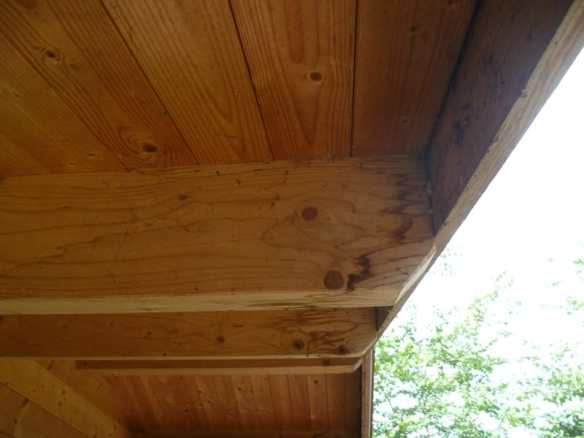 Untreated purlins on a very old log cabin
