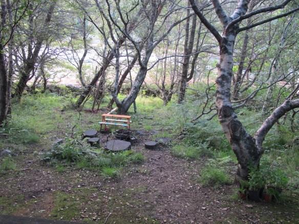 Hidden in the woods was the Bothy.