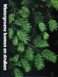 TimeLife Plantenencyclopedie Wintergroene bomen en struiken