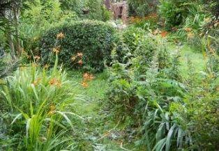 Natuurlijk tuinpad aanleggen  Kerstshow tuincentrum de