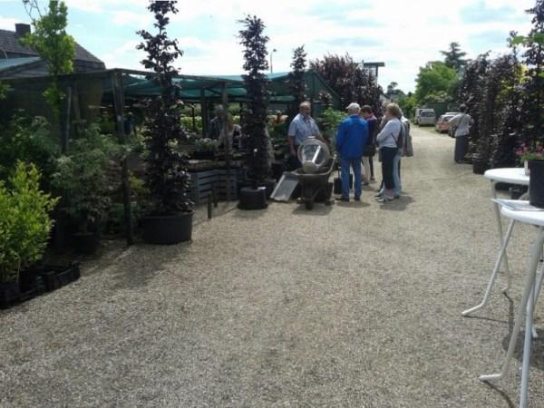 Open dagen Tuincentrum Martien Graat