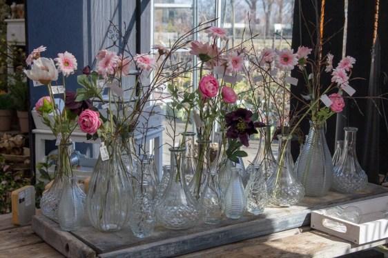 Tuincentrum-bloemsierkunst-odink-cadeauartikelen-kadoartikelen-13