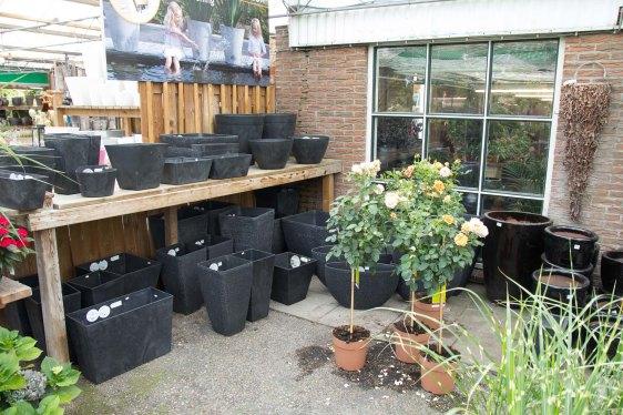 tuincentrum-bloemsierkunst-hoveniersbedrijf-Odink-5786