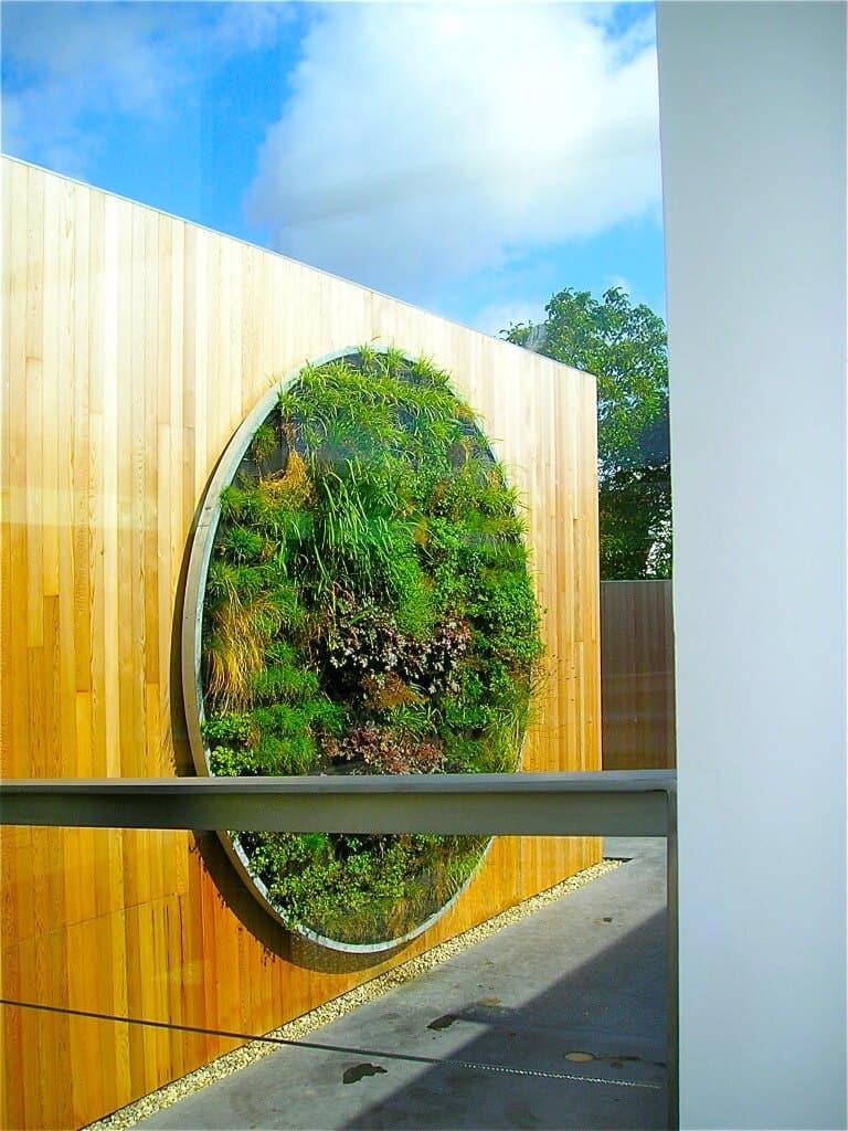 De Verticale tuin hoe maak je deze zelf en wat is het