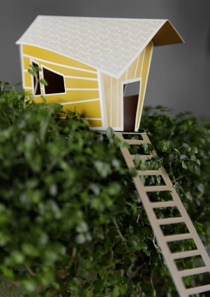 Mini boomhut in je kamerplant  Tuin en Balkon