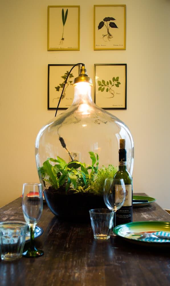 Gespot in Utrecht mini ecosysteem vermomd als lamp  Tuin