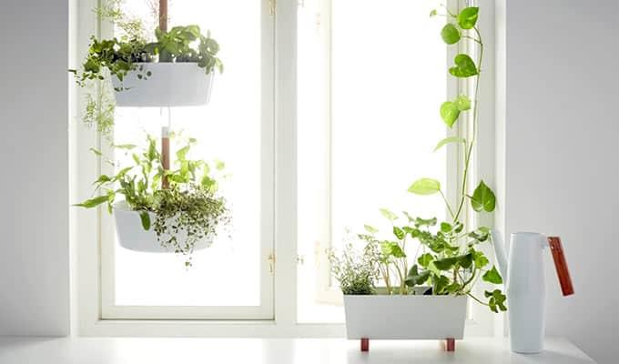 Nieuwe IKEA tuin en balkon collectie gericht op kweken