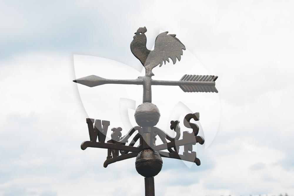 Esschert Design Windvaan met haan van gietijzer