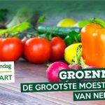 Groenmoes 2019