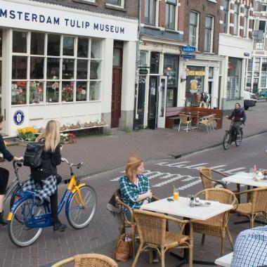 The Amsterdam Tulip Museum