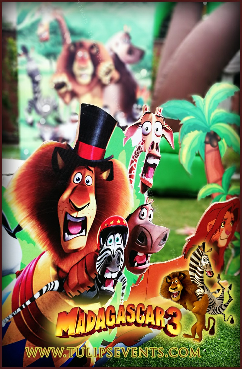 Find The Great Madagascar Birthday Party Theme Decoration Setup Ideas With Exclusively New Props And Kids Furnitures In Pakistan
