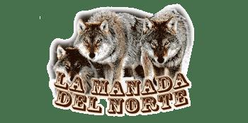 El Lobo – un estilo de vida