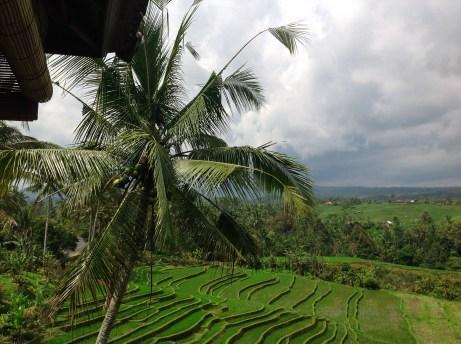 Indonesien_2_Rundreise077