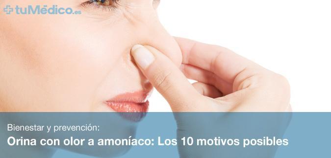 Orina con olor a amoníaco: Los 10 motivos posibles