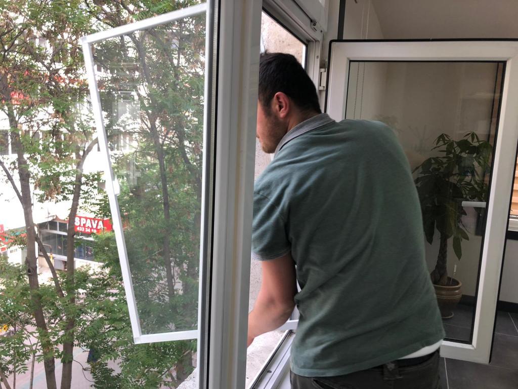 Ankara Sineklik Üretimi